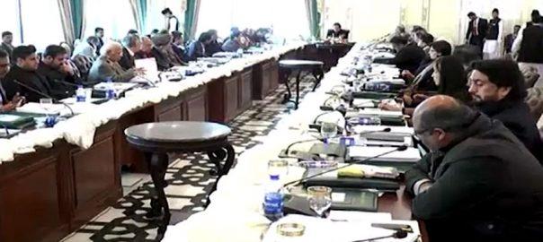 کابینہ اجلاس، اندرونی کہانی، ڈی جی اے این ایف، رانا ثنا کیس، بریفنگ، اسلام آباد، 92 نیوز