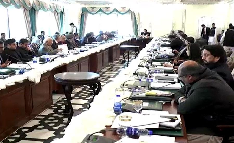 کابینہ اجلاس کی اندرونی کہانی، ڈی جی اے این ایف کی رانا ثنا کیس پر بریفنگ