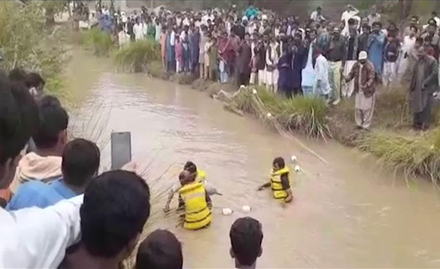 دریائے سندھ سے نایاب ڈولفن فیض گنج کے مقام پر نہر میں آ گئی