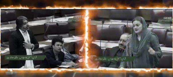 قومی اسمبلی ، مریم اورنگزیب ، عاصمہ حدید ، تلخ ، جملوں ، تبادلہ
