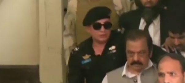 کابینہ اجلاس ، ڈی جی اے این ایف ، رانا ثنا کیس ، بریفنگ