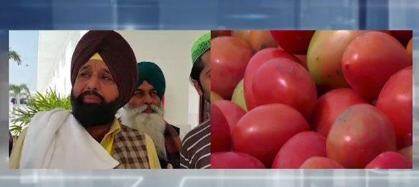 سکھ یاتری، کرتارپور راہداری، پاکستانیوں، ٹماٹر لے آئے، 92 نیوز