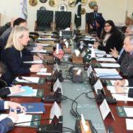 ایلس ویلز  مشیر تجارت اسلام آباد  92 نیوز امریکی نائب معاون  وزیر خارجہ
