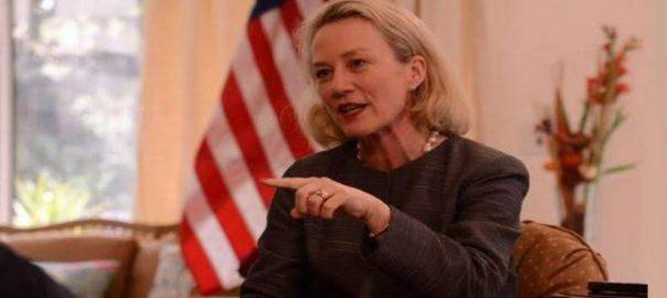 امریکی نائب معاون وزیر خارجہ ایلس ویلز اسلام آباد 92 نیوز پاکستان ابوظہبی ای وائے 232 اسلام آباد ائیرپورٹ