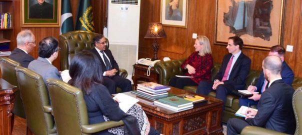ایلس ویلز ، سیکرٹری خارجہ ، سہیل محمود ، ملاقات ،افغان مفاہمتی عمل ، تبادلہ خیال
