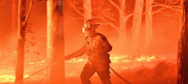 جنگلات آتشزدگی، آسٹریلوی حکومت، 3 ہزار سے زائد، ریزرو فوجی اہلکار، تعینات، اعلان، میلبورن، 92 نیوز