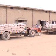 گندم  ایران  افغانستان  اسمگلنگ  آٹا بحران  اسلام آباد  92 نیوز