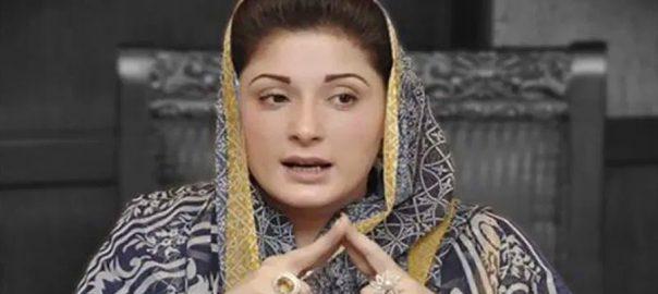 نوازشریف سیر سپاٹے یاسمین راشد لاہور  92 نیوز وزیر صحت پنجاب  ڈاکٹر یاسمین راشد  نواز شریف
