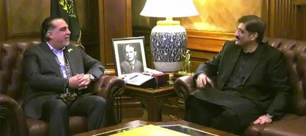 وزیر اعلیٰ سندھ ، عمران اسماعیل ، ملاقات، صوبے ، مسائل ، حل ، کام ، اتفاق