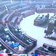 پنجاب اسمبلی اجلاس، فیاض چوہان، اپوزیشن ارکان، ذاتی حملے، لاہور، 92 نیوز
