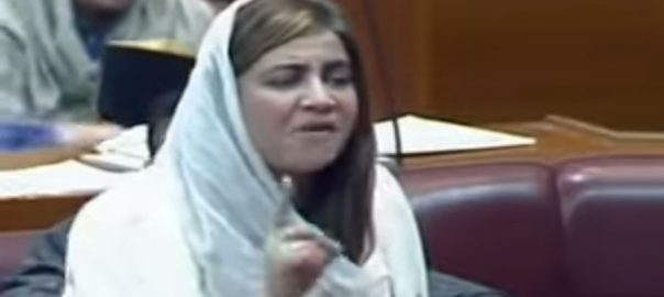 زرتاج گل، قومی اسمبلی، خواجہ آصف، برس پڑیں، اسلام آباد، 92 نیوز