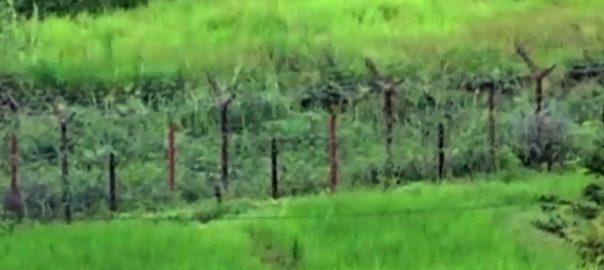 ایل او سی ، بھارتی فوج ، اشتعال انگیزی ، شہری ، زخمی
