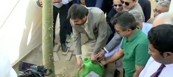 سندھ حکومت ، کراچی ، نہرخیام ، شجرکاری مہم ، صوبائی وزیر ، ناصر حسین شاہ ، شرکت