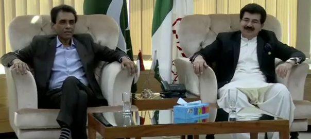 صادق سنجرانی ، خالد مقبول صدیقی ، ملاقات ، ایم کیوایم ، ملکر کام کرنیکا عزم، کراچی ، 92 نیوز