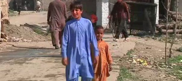 پاکستان ، مہاجرین ، مسائل ، حل ، 17 فروری ، کانفرنس