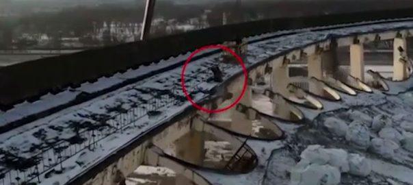 روس، آئس ہاکی اسٹیڈیم ، عمارت گرنے ، مزدور ہلاک ، سینٹ پیٹرز برگ ، 92 نیوز