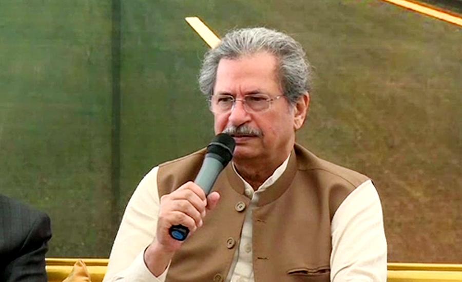 اتحادی ہم خیال،تحفظات جلد دور کرینگے،شفقت محمود