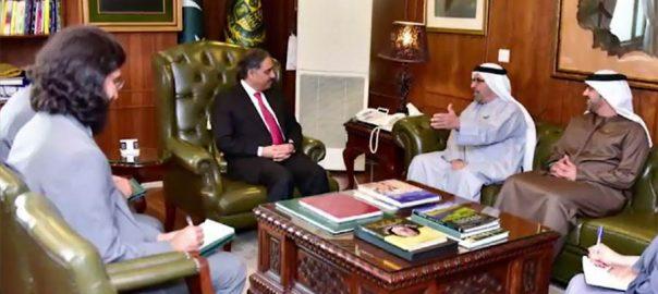 پاکستان ، متحدہ عرب امارات ، سیاسی مشاورتی ، اجلاس، پاک امارات دوطرفہ امور ، تبادلہ خیال