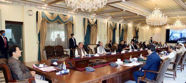 کابینہ ، پاورسیکٹر انکوائری ، پبلک ، اعلان ، وزیراعظم عمران خان ، فردوس عاشق اعوان ، اسدعمر ، اسلام آباد ، 92 نیوز