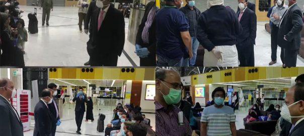 عراق ، محصور ، پاکستانی ، پی آئی اے ، خصوصی پرواز ، وطن ، روانہ