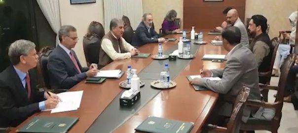 بیرون ممالک ، پھنسے پاکستانیوں ، جلد وطن واپسی ، لائحہ عمل طے ، شاہ محمود ، خصوصی اجلاس ، اسلام آباد ، 92 نیوز