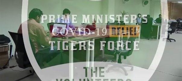 سندھ حکومت ، راشن ، تقسیم ، ٹائیگر فورس ، شامل ، فیصلہ