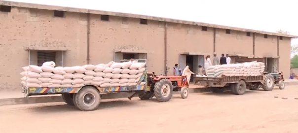 نیب ، گندم اسکینڈل ، 10 ارب روپے ، ریکوری ، کراچی ، 92 نیوز