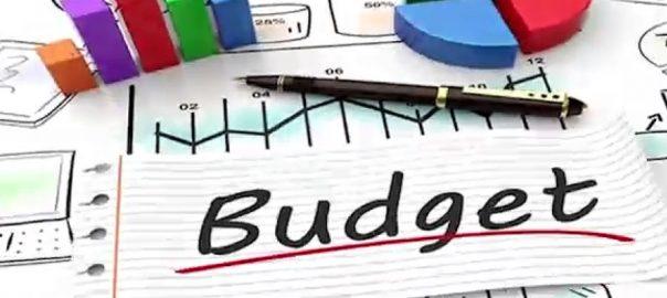 وفاقی حکومت ، آئندہ مالی سال ، بجٹ ، تیاری ، کام ، شروع