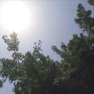 لاہور ، ملتان ، ملک ، مختلف شہروں ، سورج آگ برساتا رہا ، لاہور ، 92 نیوز