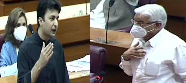 خواجہ آصف ، جھوٹے الزامات ، لگائے ، مراد سعید