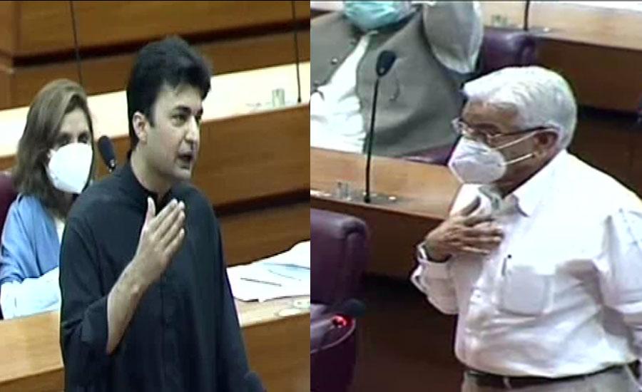 خواجہ آصف نے جھوٹے الزامات لگائے ، مراد سعید