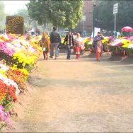 کورونا ، لاہور ، پارک ، عام شہریوں ، کھل