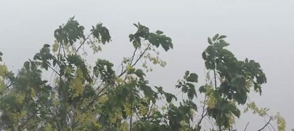لاہور ، آج ، تیز ہوائوں ، گرج چمک ، بادل برسیں گے ، لاہور ، 92 نیوز