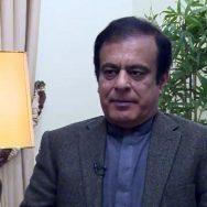 وزیراعلیٰ ، عثمان بزدار ، شبلی فراز ، وزیر اطلاعات