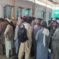 افغانستان ، پھنسے 843 پاکستانی ، طورخم کے راستے ، پاکستان پہنچ گئے ، پشاور ، 92 نیوز