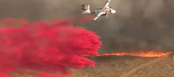 کیلی فورنیا ، جنگلات ، 2 مقامات پر آگ ، ایک ہزار ایکڑ سے زائد رقبہ ، متعدد مکانات راکھ ، 92 نیوز