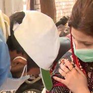 ملک بھر ، کورونا ، 65 افراد جان لے لی ، اسلام آباد ، 92 نیوز