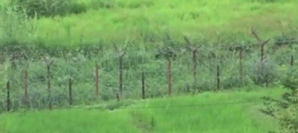بھارتی فورسز ، لائن آف کنٹرول ، سبزکوٹ سیکٹر ، فائرنگ، 70 سالہ ، بزرگ خاتون ، زخمی