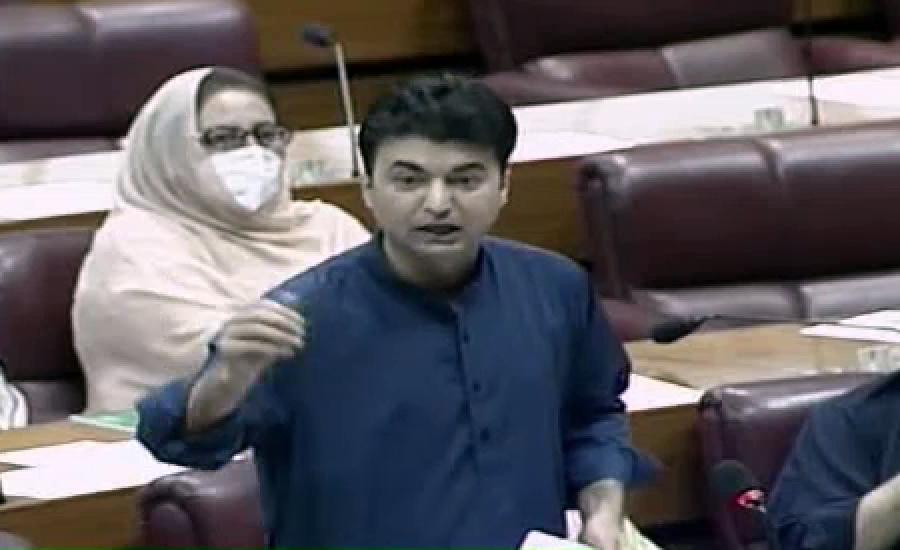 عزیر بلوچ نے بتایا کہ  پیپلزپارٹی کے کہنے پر اہلکاروں کو قتل کیا ، مراد سعیدکا قومی اسمبلی میں خطاب