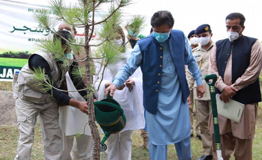 وزیر اعظم کا اگلے سال اگست تک ایک ارب درخت لگانے کا وعدہ