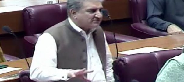 کرپشن ، کوئی سمجھوتہ نہیں ہوگا ، شاہ محمود قریشی ، قومی اسمبلی ، خطاب ، اسلام آباد ، 92 نیوز