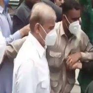 آمدن سے زائد ، اثاثہ جات کیس ، شہبازشریف ، عبوری ضمانت ، 23 جولائی تک توسیع ، لاہور ، 92 نیوز