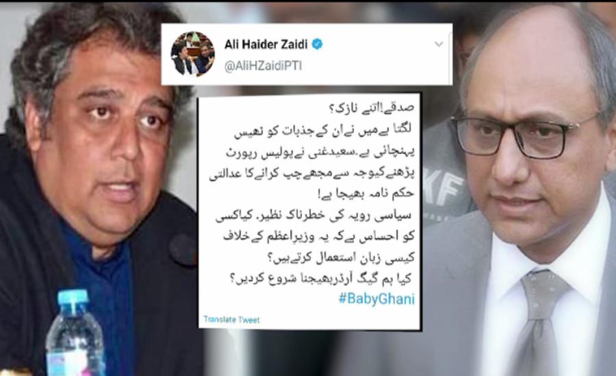 علی زیدی نے سعید غنی کی جانب سے  بھجوایا گیا عدالتی حکم نامہ ٹویٹ کردیا