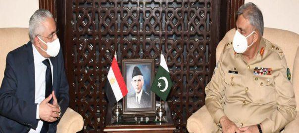 آرمی چیف ، مصر ، سفیر ، ملاقات ، شعبوں ، تعاون ، گفتگو