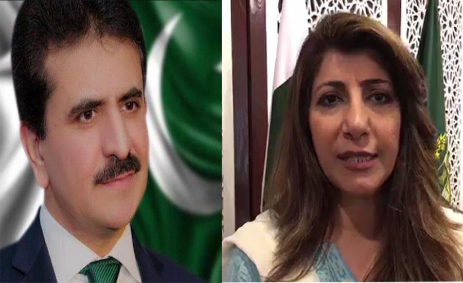 وزارت خارجہ میں اہم تبدیلی،عائشہ فاروقی کی جگہ زاہد حفیظ چودھری نئے ترجمان مقرر