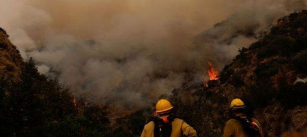 امریکا ، جنگلات ، آگ ، قابو نہ پایا جا سکا ، حادثات ، ہلاکتیں 33 ، کیلی فورنیا ، 92 نیوز