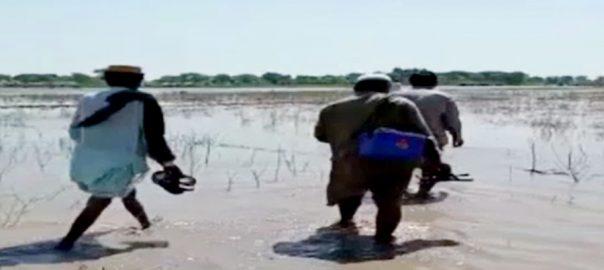 روجھان ، پولیو مہم ، ورکرز ، سیلاب متاثرہ علاقوں ، متحرک ، 92 نیوز