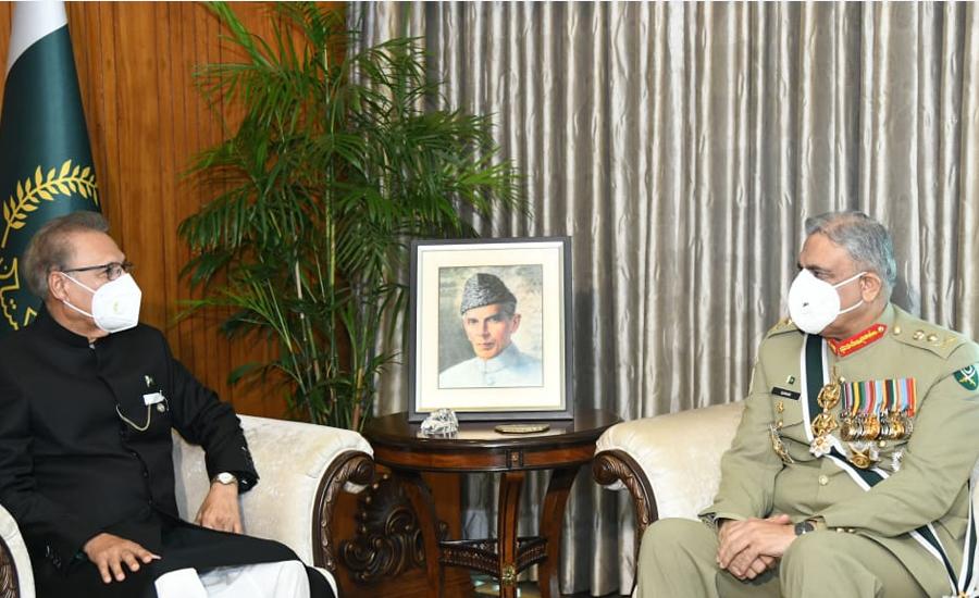 صدر مملکت سے آرمی چیف کی ملاقات، پاک فوج کے پیشہ ورانہ امور پر بریفنگ دی