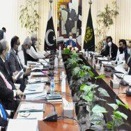 ای سی سی ، گندم کی امدادی قیمت ، 200 روپے اضافے ، منظوری ، مشیر خزانہ عبدالحفیظ شیخ ، اجلاس ، 92 نیوز