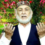 Mehboob Ahmed Hamdani